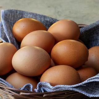 Eier 10er